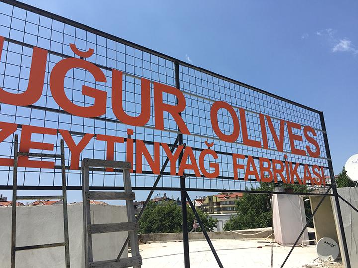 Uğur Olives